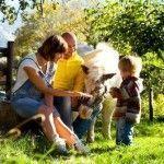 turismo-rural-con-ninos-con-animales
